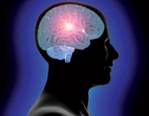 0head_and_brain